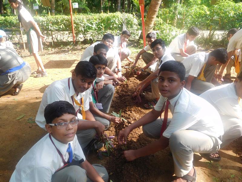 visit-to-keshav-shrushti-farms-15