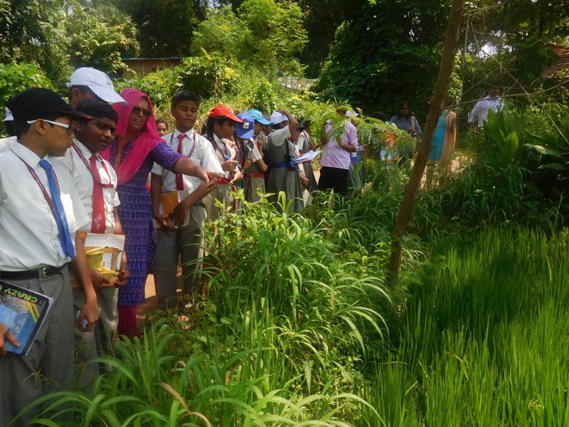visit-to-keshav-shrushti-farms-8